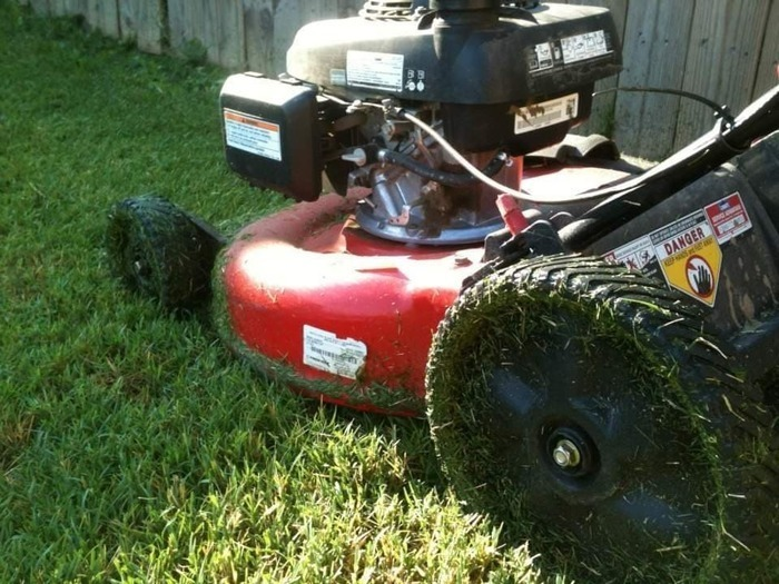 Image for What Does It Take To Start A Lawn Care Business?
