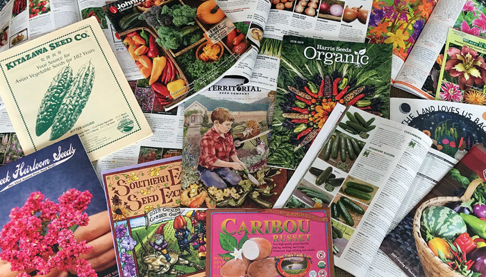 Image for 11 Seed Catalogs You Should Read This Winter