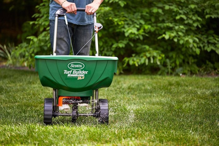 Spreading fertilizer keeps grass healthy and can prevent crabgrass