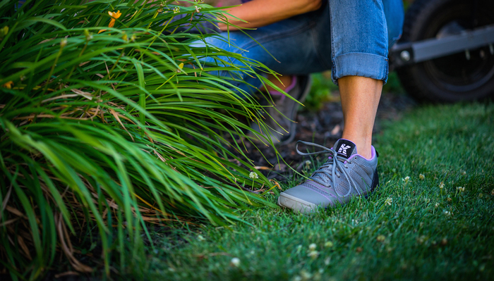 Image for 6 Surprising Reasons Why Homeowners Really Work On Their Lawn & Garden